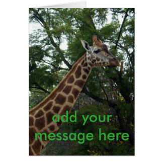 Giraffe_Adventure_Greeting_Card. Cartão Comemorativo