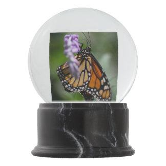 Globo De Neve Danaus Plexippus do monarca