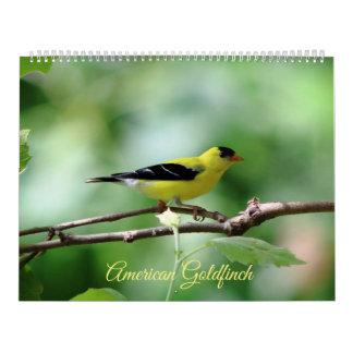 Goldfinch americano, calendário