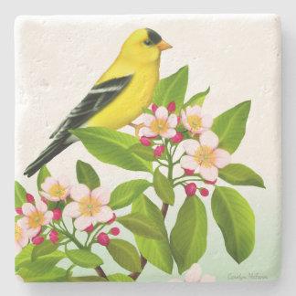 Goldfinch masculino na porta copos das flores da porta-copo de pedra