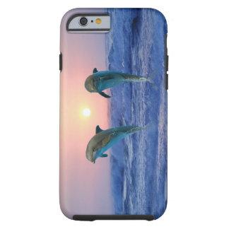 Golfinhos no nascer do sol capa tough para iPhone 6