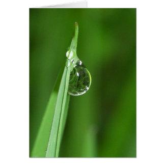 Gota de grama verde e de água com reflexão cartão