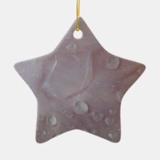 Gotas da chuva em uma pétala da íris ornamento de cerâmica estrela