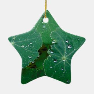 Gotas de refrescamento da chuva ornamento de cerâmica estrela