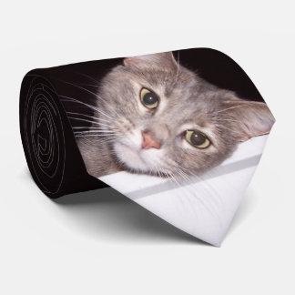 Gravata Laço do gato de Tilly