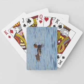 Grebe pequeno e pintinho jogo de carta
