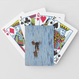 Grebe pequeno e pintinho jogos de baralhos