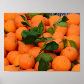 Grupo bonito das laranjas pôsteres