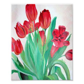 Grupo de tulipas vermelhas impressão fotográfica