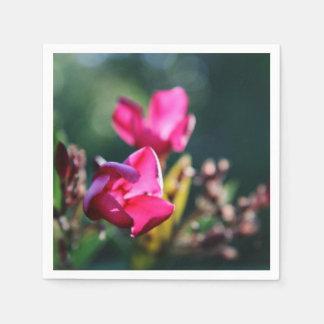 Grupo do guardanapo da flor da flor de cerejeira