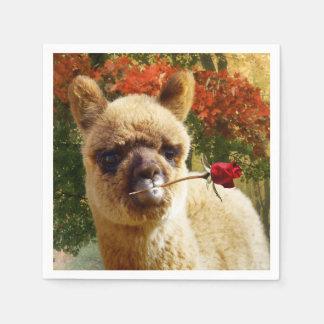 Guardanapo De Papel A alpaca aumentou