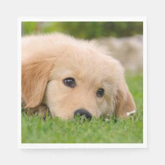 Guardanapo De Papel O filhote de cachorro bonito do golden retriever