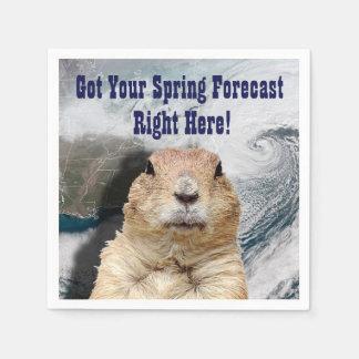 Guardanapo De Papel Previsão do primavera de Groundhog