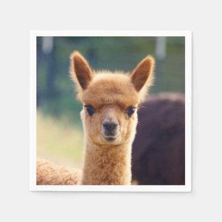 Guardanapo padrão do cocktail da alpaca do bebê
