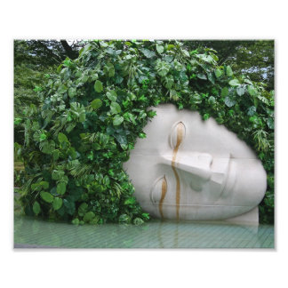 Hakone Impressão De Foto