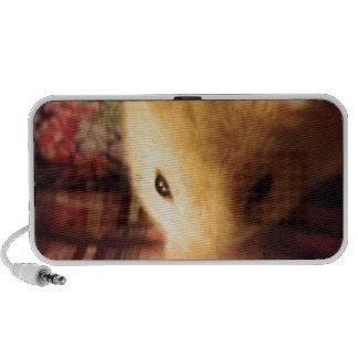 Hamster sírio bonito caixinhas de som para laptop