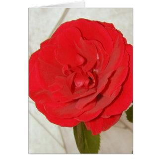 Happy Mother's Day Red Rose II Card