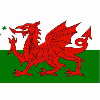 Herança de Galês do australiano, bandeira de Austr Foto Esculturas
