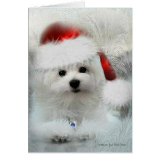 Hermes o cartão vazio maltês do Natal
