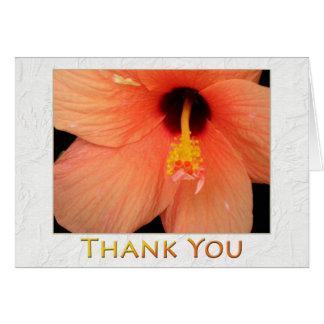 Hibiscus floral do pêssego do dia feliz das cartão