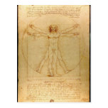 Homem de Vitruvian - Leonardo da Vinci Cartao Postal