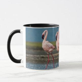 Homem poucos flamingos (menor de Phoenicopterus) Caneca