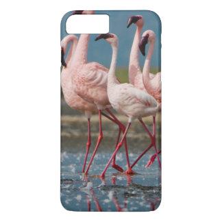 Homem poucos flamingos (menor de Phoenicopterus) Capa iPhone 7 Plus