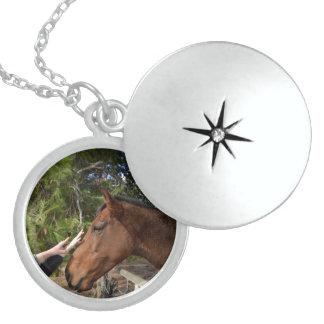 Horse_Pat, _Sterling_Silver_Locket_Necklace. Colar De Prata Esterlina