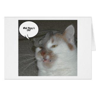 Humor do despedida de solteiro cartão