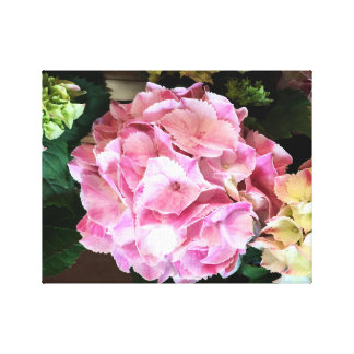Hydrangea cor-de-rosa bonito em canvas impressão em tela