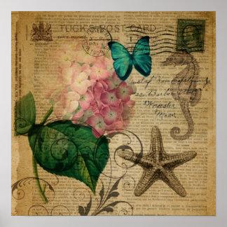 Hydrangea floral do seashell botânico francês da póster