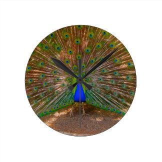 Ideias masculinas do presente do pavão relógio para parede