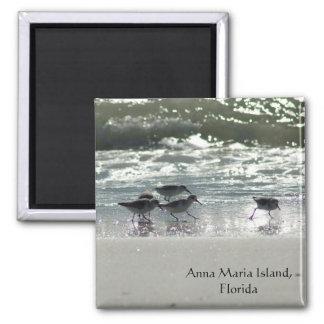 Ilha de Anna Maria, Florida Ímã Quadrado