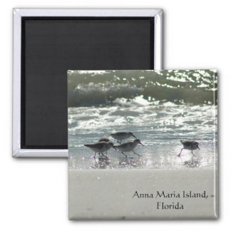 Ilha de Anna Maria, Florida Imã De Geladeira
