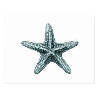 Ilustração antiga da estrela do mar do mar cartão postal