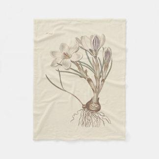 Ilustração botânica do açafrão escocês cobertor de lã