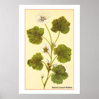 Ilustração do vintage de um Mallow com folhas Impressão