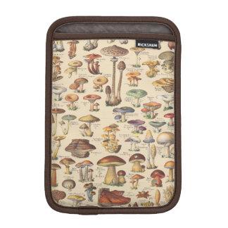 Ilustração do vintage dos cogumelos capas para iPad mini