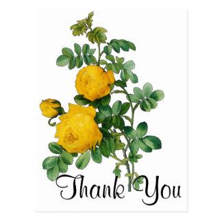 Ilustração dos rosas amarelos cartão postal