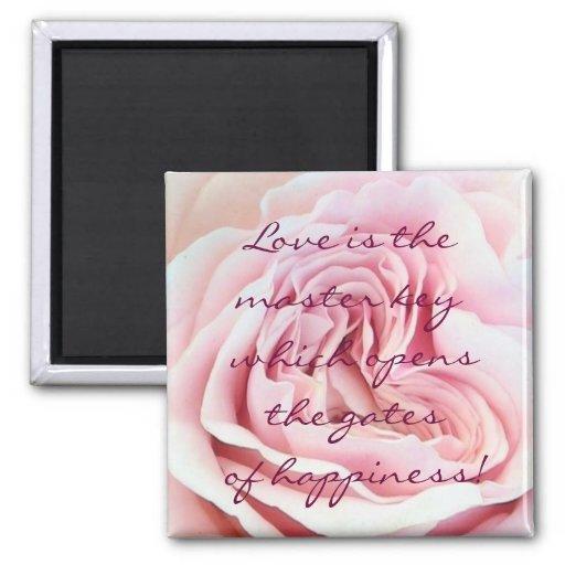 Ímã cor-de-rosa do amor ima