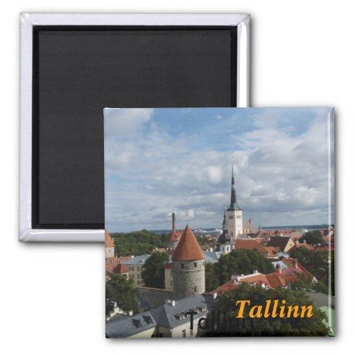 Ímã da cozinha de Tallinn Imas