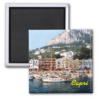 Ímã de Capri Imã