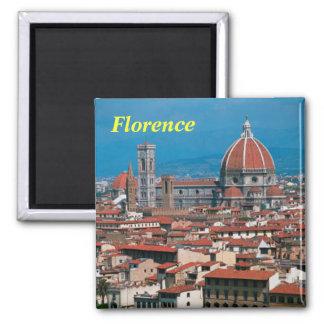 Ímã de Florença Ima