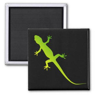 Ímã do lagarto ímã quadrado
