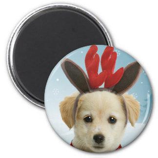 Ímã do Natal do filhote de cachorro da rena Ímã Redondo 5.08cm