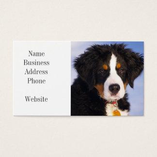 Imagem bonito do filhote de cachorro do cão de cartão de visitas