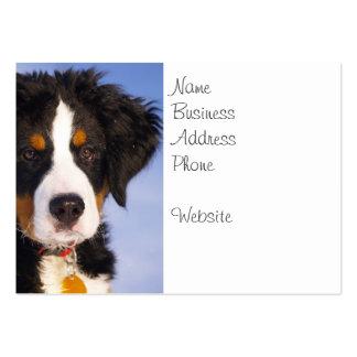 Imagem bonito do filhote de cachorro do cão de mon cartões de visita