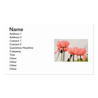 Imagem da papoila cartão de visita