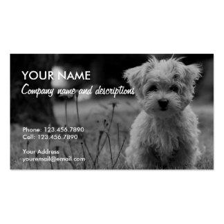 Imagem do cão pequeno bonito cartão de visita