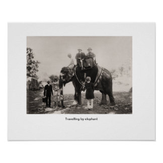 Imagem do vintage, India, viajando pelo elefante Posters